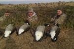 CF Goose Hunt