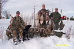 Goose hunt 006